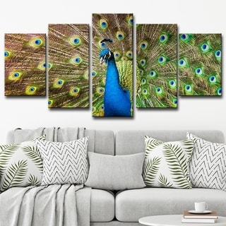 Bruce Bain 'Peacock' 30x60-inch Canvas 5-piece Wall Art Set