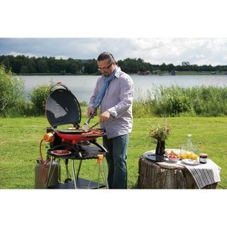 Napoleon TravelQ 2225 Portable Gas Grill