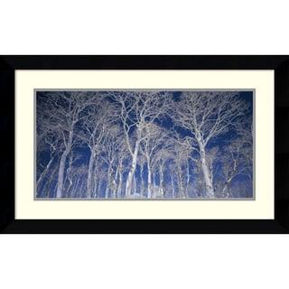 Micha Pawlitzki 'Birch Trees' Framed Art Print 32 x 20-inch