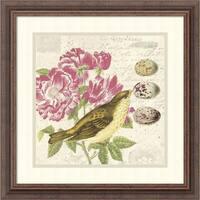 Framed Art Print 'Bird Study 3' by Paula Scaletta 19 x 19-inch