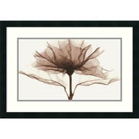 Framed Art Print 'A Rose' by Steven N. Meyers 27 x 19-inch
