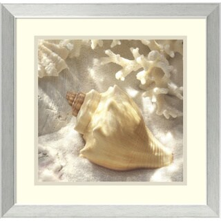 Donna Geissler 'Coral Shell IV' Framed Art Print 18 x 18-inch