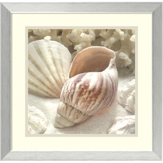 Donna Geissler 'Coral Shell II' Framed Art Print 18 x 18-inch