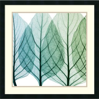 Framed Art Print 'Celosia Leaves I' by Steven N. Meyers 26 x 26-inch|https://ak1.ostkcdn.com/images/products/9172243/P16348683.jpg?impolicy=medium