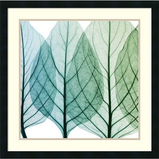 Framed Art Print 'Celosia Leaves I' by Steven N. Meyers