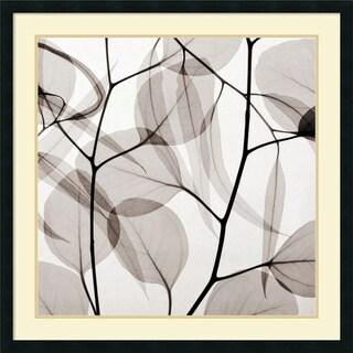 Steven N. Meyers 'Eucalyptus Leaves (Positive)' Framed Art Print 34 x 34-inch