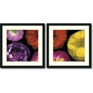Pip Bloomfield 'Ranunculus II- set of 2' Framed Art Print 25 x 25-inch Each