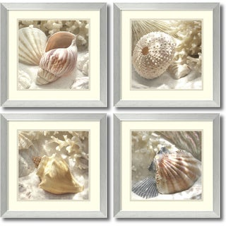 Framed Art Print 'Coral Shell - set of 4' by Donna Geissler 18 x 18-inch Each