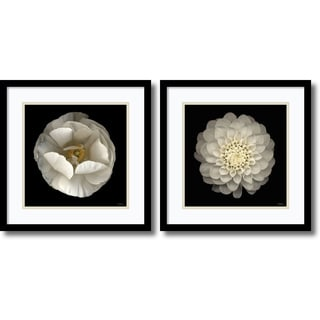 Levine Florals- set of 2' Framed Art Print 17 x 17-inch Each