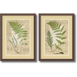 Vision Studio 'Fern Folio- set of 2' Framed Art Print 24 x 32-inch Each