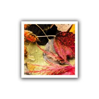 Dean Uhlinger 'Autumn Array' Unwrapped Canvas