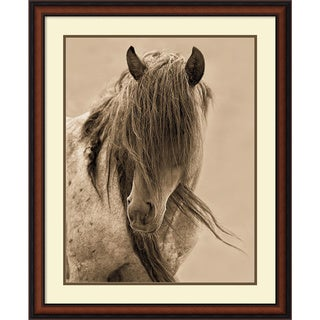 Lisa Dearing 'Freedom' Framed Art Print 28 x 34-inch