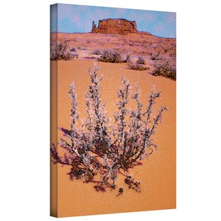 Dean Uhlinger 'After Desert Rain' Gallery-wrapped Canvas