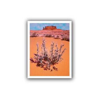 Dean Uhlinger 'After Desert Rain' Unwrapped Canvas
