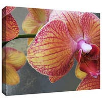 Dean Uhlinger 'Orchid Study' Gallery-wrapped Canvas