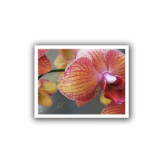 Dean Uhlinger 'Orchid Study' Removable wall art graphic