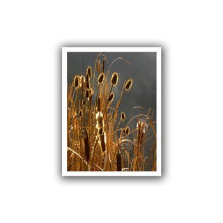 Dean Uhlinger 'Cattails and Storm Light' Unwrapped Canvas - Multi