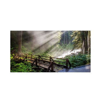 Pierre Leclerc 'Forest Sunlight' Canvas Art