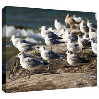 Cody York 'Pigeons' Gallery-wrapped Canvas