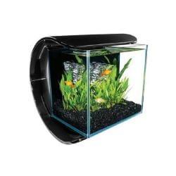 3 Gallon Silhouette Aquarium Kit