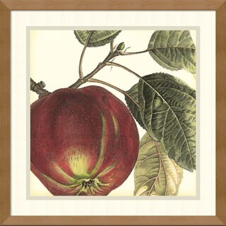 Vision Studio 'Graphic Apple' Framed Art Print 17 x 17-inch