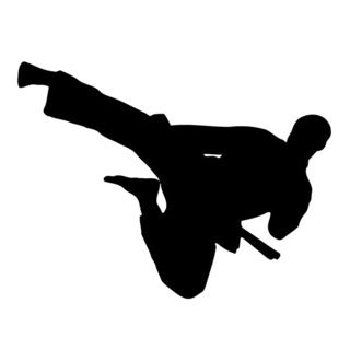 Flying Kick Karate Wall Vinyl Art