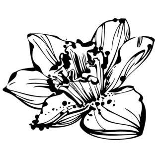 Wild Flower Wall Vinyl Art
