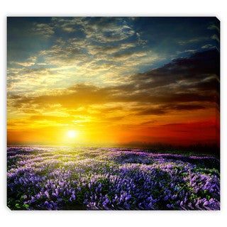 Gallery Direct Vitaly Krivosheev 'Sunset Over a Summer Lavender Field' Gallery Wrapped Canvas Art
