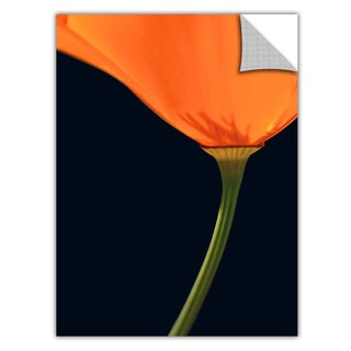 Dean Uhlinger 'Pauma Valley Poppy' Removable wall art graphic - Multi (4 options available)