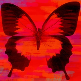 Art in Style 'Butterfly in Orange and Pink' Giclee on Canvas Wall Art