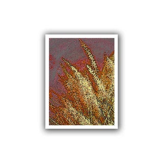 Dean Uhlinger 'Canyon Grass' Unwrapped Canvas