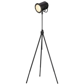 Lite Source Directeur Single-light Floor Lamp