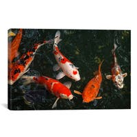 iCanvas Koi Carp In Japan  by Unknown Artist Canvas Print Wall Art