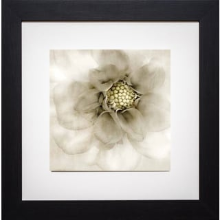 Donna Geissler 'Whisper of Dahlia' Framed Artwork