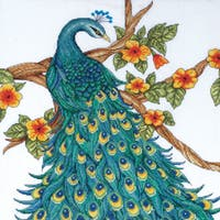 Peacock Counted Cross Stitch Kit-14inX14in 14 Count