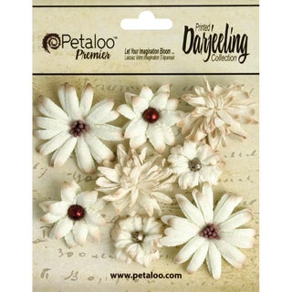 """Darjeeling Teastained Mini Mix Flowers .75"""" To 1.5"""" 8/Pkg-Cream"""