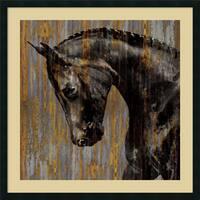 Framed Art Print 'Horse I' by Martin Rose 34 x 34-inch
