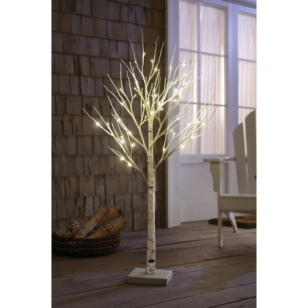 Shop Order Home Collection 4-foot Decorative LED Birch
