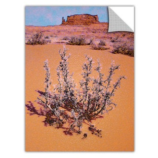 Dean Uhlinger 'After Desert Rain' Removable Wall Art Graphic