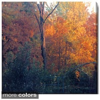 Studio Works Modern 'Vermont Forest' Fine Art Gallery Wrapped Canvas Wall Art