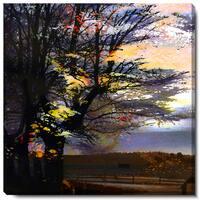 Studio Works Modern 'Evening Foliage' Fine Art Gallery Wrapped Canvas
