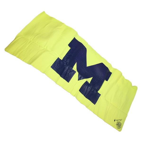 Frogg Toggs-Chilly Pad Sports South Carolina NCAA Cool Comfort Towel NCAA