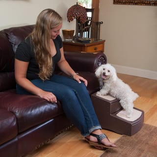 Pet Stairs Amp Ramps For Less Overstock Com