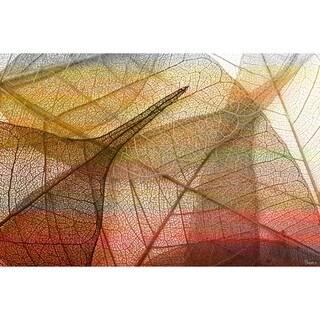 Parvez Taj 'Apart' Fine Art Print