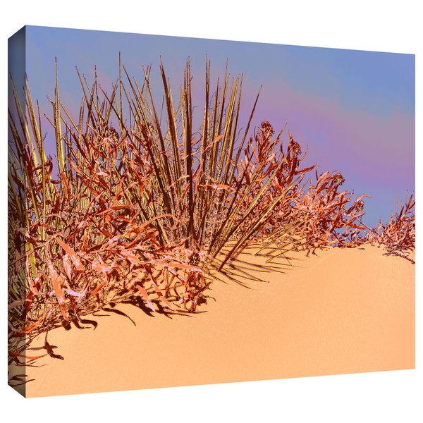 Dean Uhlinger 'Coral Dunes Noon' Gallery-wrapped Canvas