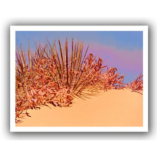 Dean Uhlinger 'Coral Dunes Noon' Unwrapped Canvas