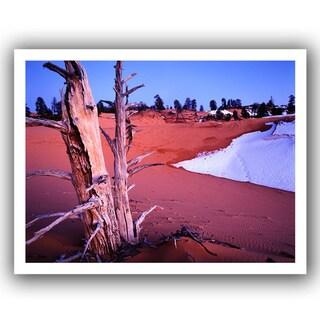 Dean Uhlinger 'Coal Dunes Dusk' Unwrapped Canvas
