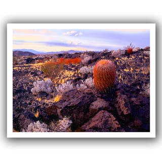 Dean Uhlinger 'In the Mojave' Unwrapped Canvas