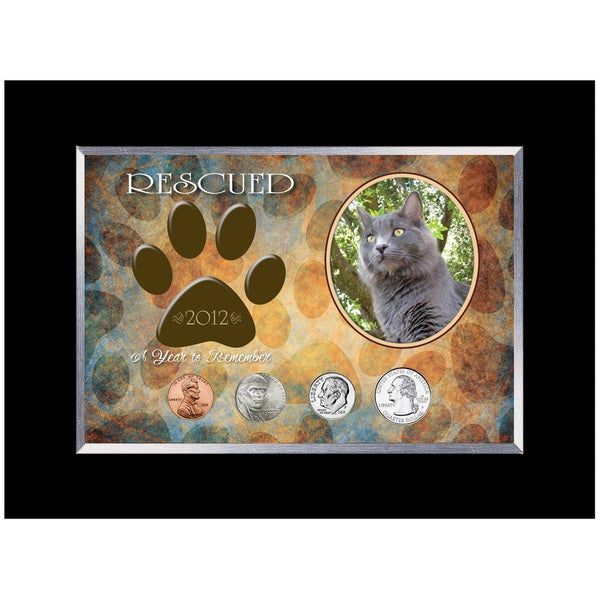 American Coin Treasures Rescued Year To Remember Cat Coin Frame