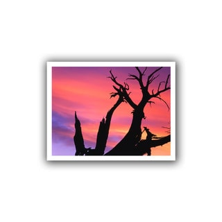 Dean Uhlinger 'Desert Magic Hour' Unwrapped Canvas
